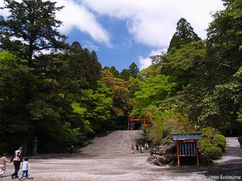 Kagoshima060423_03