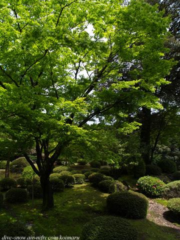 Kagoshima060423_04